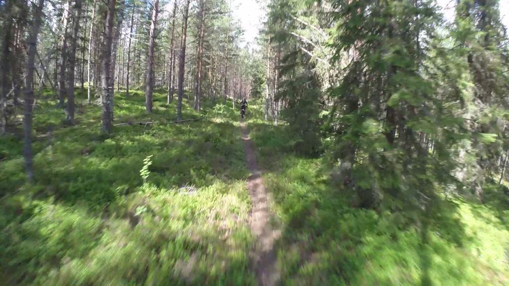 vlcsnap-2015-08-28-14h29m44s266